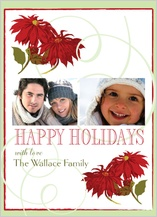 Christmas Cards - poinsettia time