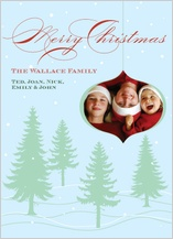 Christmas Cards - winter wonderland too
