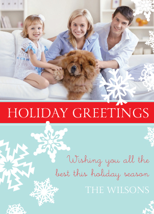 Christmas Cards - soft snowflakes