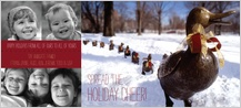 Holiday Cards - make way for ducklings
