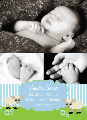 Birth Announcement with photo - In Like a Lamb