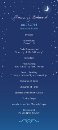 Program - Starry Night