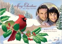 Holiday Cards - holiday cardinal