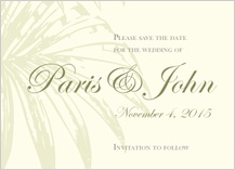 Save the Date Card - palm trees