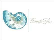 Wedding Thank You Card - sea shells