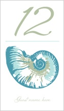 Place Card - sea shells