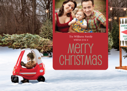 Christmas Cards - Christmas Tree Delivery