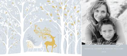 Holiday Cards - Reindeer Sleigh Ride