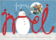 Christmas Cards - joyous noel