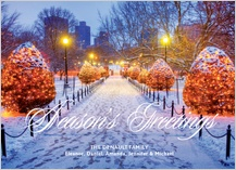 Holiday Cards - public garden greetings