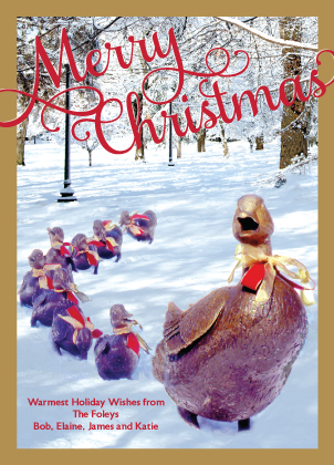 Christmas Cards - Make Way for Ducklings 2018
