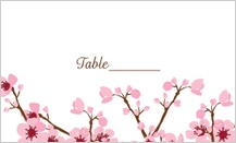 Place Card - cherry blossoms sing