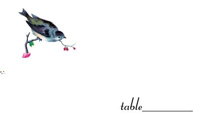 Place Card - sparrow days