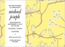 Birth Announcement - canaries