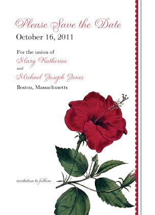 Save the Date Card - Vintage Hibiscus