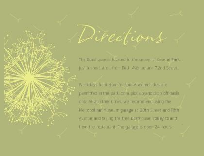 Direction - Dandelion Affair
