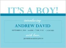 Birth Announcement - elegant arrival