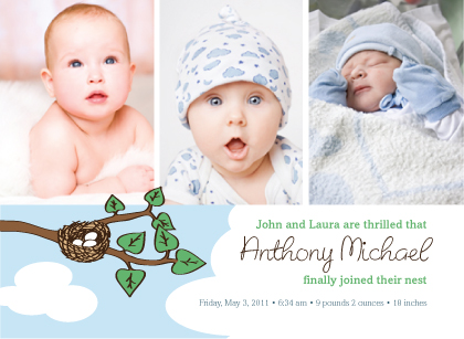 Birth Announcement with photo - Nest