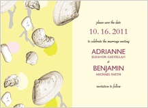 Save the Date Card - shells