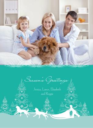 Christmas Cards - Dog Sledding Holiday