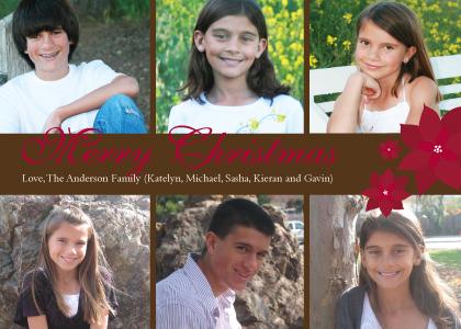 Christmas Cards - Poinsettia Christmas