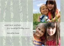 Holiday Cards - wonderful holiday